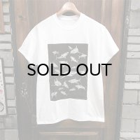"{PARADOX} ""Sharks"" S/S T-SHIRTS / WHITE×BLACK"