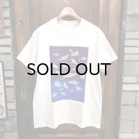 "{PARADOX} ""Sharks"" S/S T-SHIRTS / NATURAL × gradation"