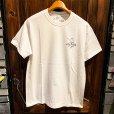 """画像1: {SNOID} """"catalog"""" T-shirts  (1)"""