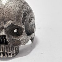 ※受注商品※ {GRYPHON} Anatomical Skull Ring without Joe
