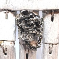 ※受注商品※ {GRYPHON} Apartment Skull Ring
